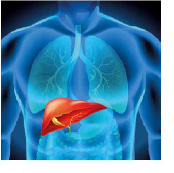 Tratamentul tumorilor hepatice prin embolizare