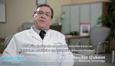 Cum functioneaza terapiile targetate pentru cancer?