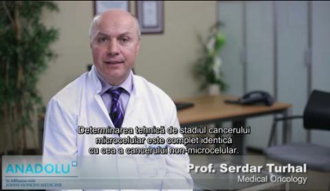 Stadializarea cancerului pulmonar cu celule mici