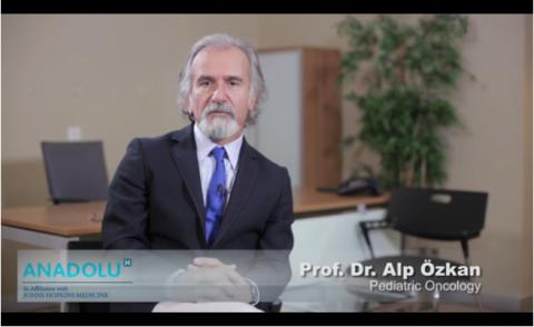 M.D. Prof. Alp Özkan - CV